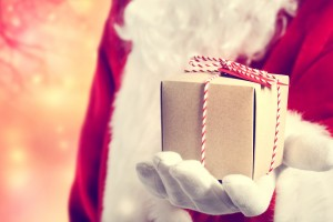 Retail expert reveals holiday hot list